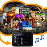 Full Music Catalogue Service: Download & Play